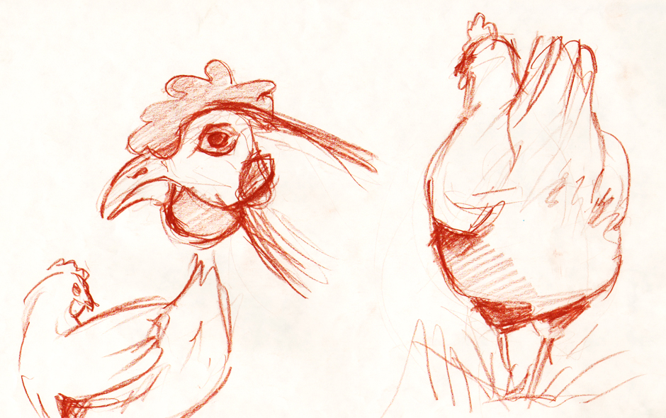 Sketches of animals - chicken