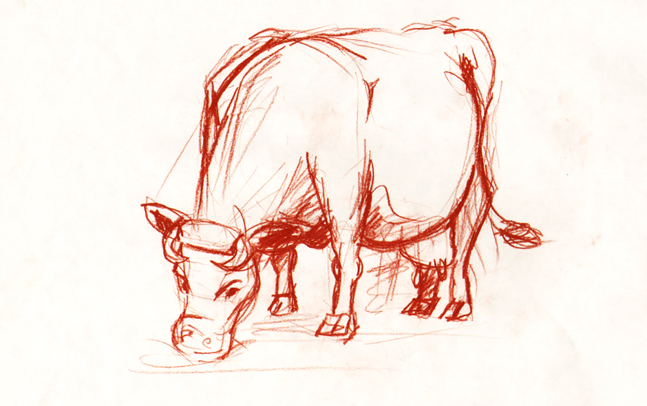 Sketches of animals - cow