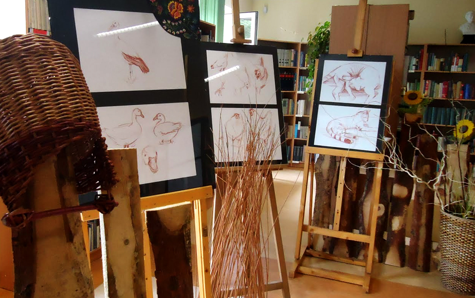 Sketches of animals - exhibition fot. Jola Kluzek